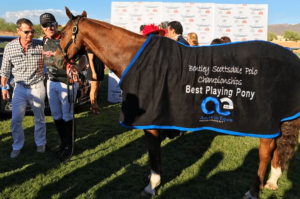 Molina Cup - Best Playing Pony