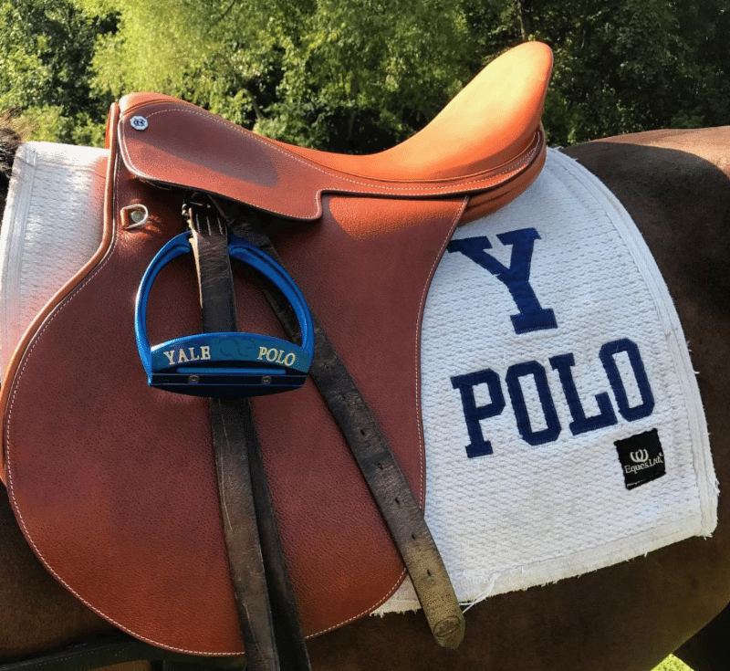Yale Polo