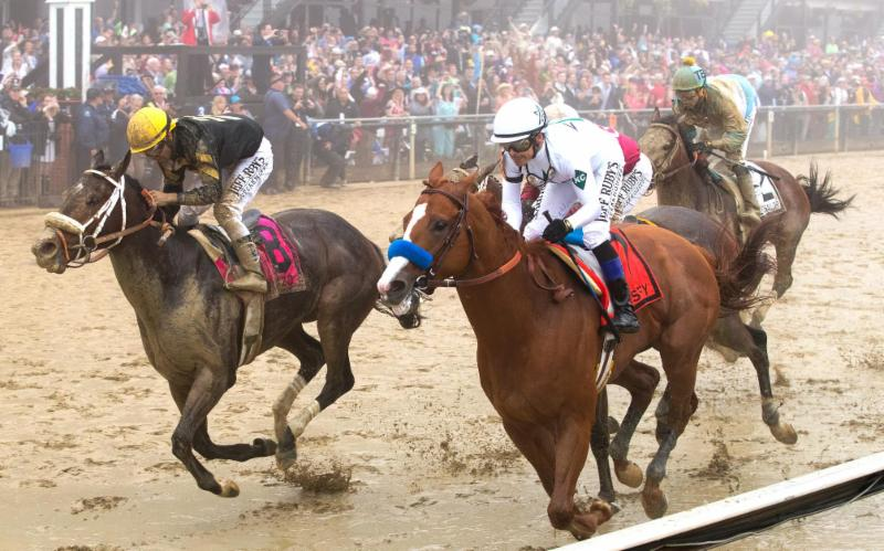 MS-Justify-Preakness-2018