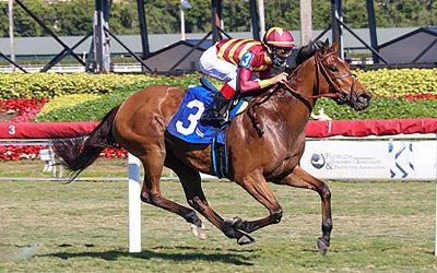 American Equus Chosen Riders Dominate at Pegasus World Cup Invitational